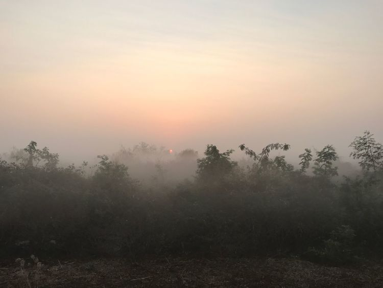 Nature Fog Outdoors Sky Lane Bicycle Track 23.5 Km Per Round ThaiLocal Thailand Cycling