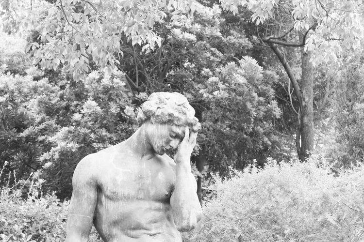 Bronze Statue Man Woods Distress Headache Monochrome Street Photography Black And White Black & White Streetphotography Tree Trees Kobe, Japan