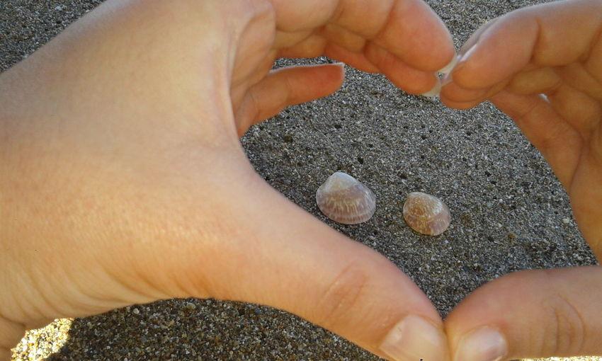Enjoying Life Luv... Seashells Sand sunny day