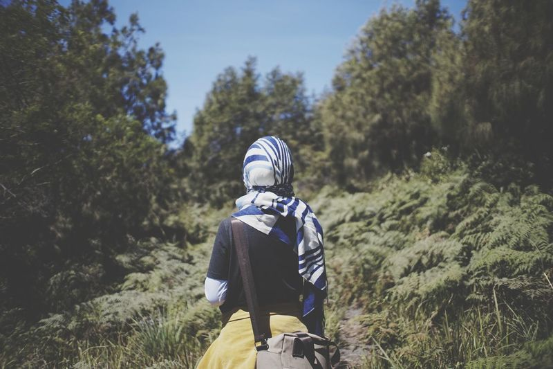 Rear view of hijabi woman standing amidst trees in forest