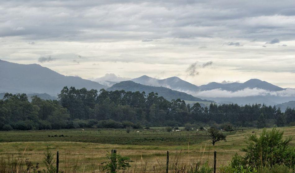 TGI Fence Post Friday Landscapes Of Brasil NEM Landscapes Awesome_nature_shots