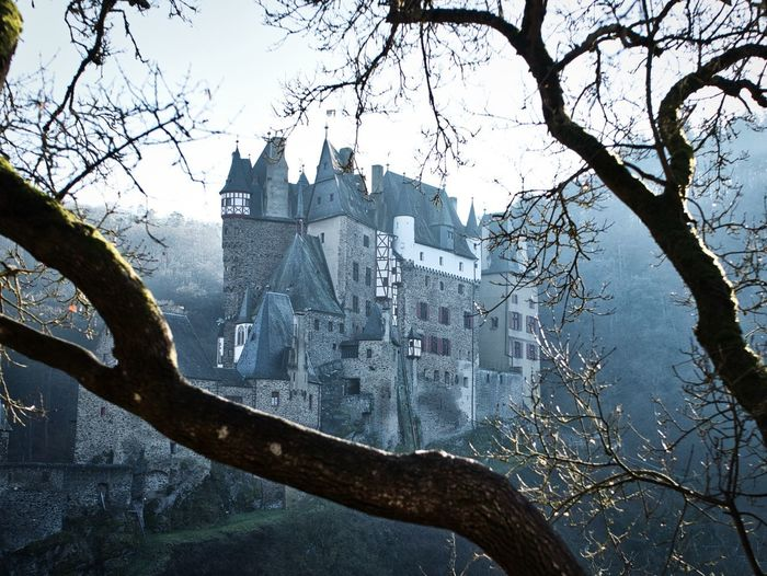Built Structure Building Exterior Architecture Tree Building Branch Nature Day History No People Outdoors Castle Beautiful Germany The Past