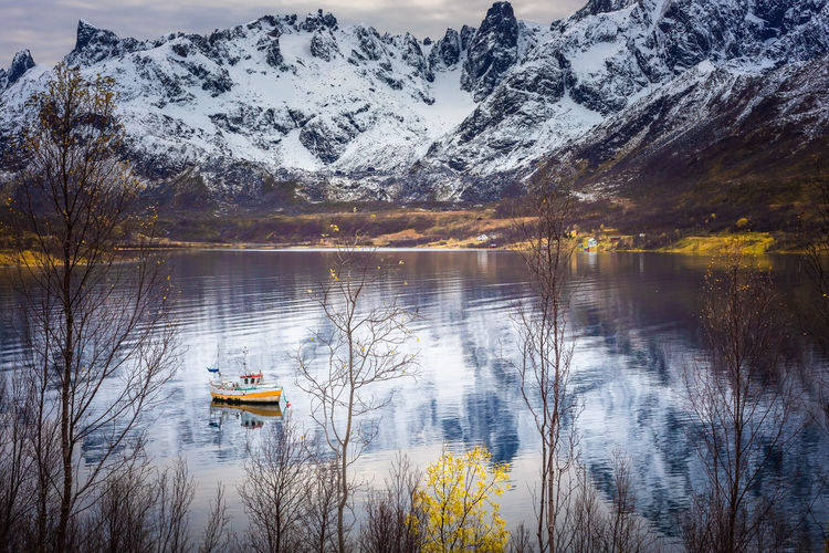 A boat on a fjord with reflection and mountains with snow Fjord Water Scenics - Nature Beauty In Nature Reflection Mountain Tranquil Scene Tranquility Tree Winter Snow Cold Temperature Nature Nautical Vessel Plant Non-urban Scene No People Day Mountain Range Outdoors Snowcapped Mountain Norway Nuvsvåg Boat Arctic