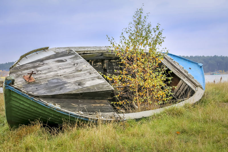 Abandoned Boat Damaged Day Desolate Field Grass Mode Of Transport Moored Nature Nautical Vessel No People Obsolete Outdoors Sky Transportation Tree Water