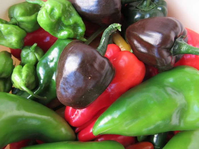 Chili Mix Scotch Bonnet Pepper Scotch Bonnet Caribbean Bell Pepper Capsicum Chinense Chilipeppers Chili Plant Chili Pepper Vegetable Food And Drink Still Life Food Green Bell Pepper Green Color No People Bell Pepper Red Bell Pepper