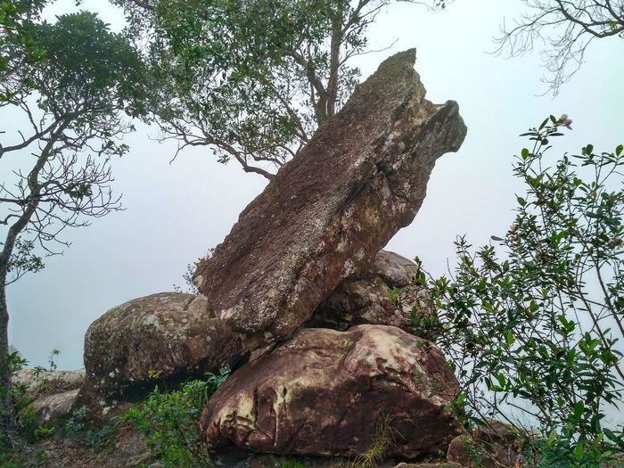 Tab Kak Hang Nak Nature Trail Thailand Nature Sky Tree Stones Landscape Beauty In Nature Nature Mountain Outdoors No People Wildlife Stone Forest Landscapes Landcape Fog Fog_collection Miles Away