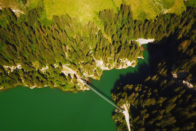 High angle view of lake amidst trees against mountains