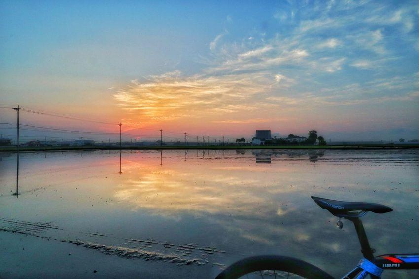 田舎ライダー🚴♂️ 海でも湖でもなく、田んぼです😊 農家はどこも、田植え作業で大忙し❗ おじさん、キレイな風景だったので写真撮らせてもらってただけです。今度、印刷して持って行きますね😃 ありがとうございました😊 朝チャリ サイクリング 自転車 ロードバイク 日の出 朝日 朝 Cycling Bicycle Roadbike Bike Nature Sunrise Morning Ride  Good Morning Morning Morning Glow Nature_collection 田んぼ Rice Paddy Water Water Reflections Water Sunset Sea Beach Reflection Sky Cloud - Sky Horizon Over Water