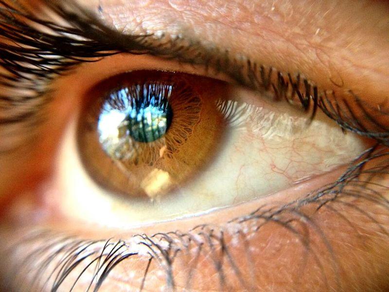This look is paradise! 😍 Human Eye Macro Eyesight People Beauty Real People Day