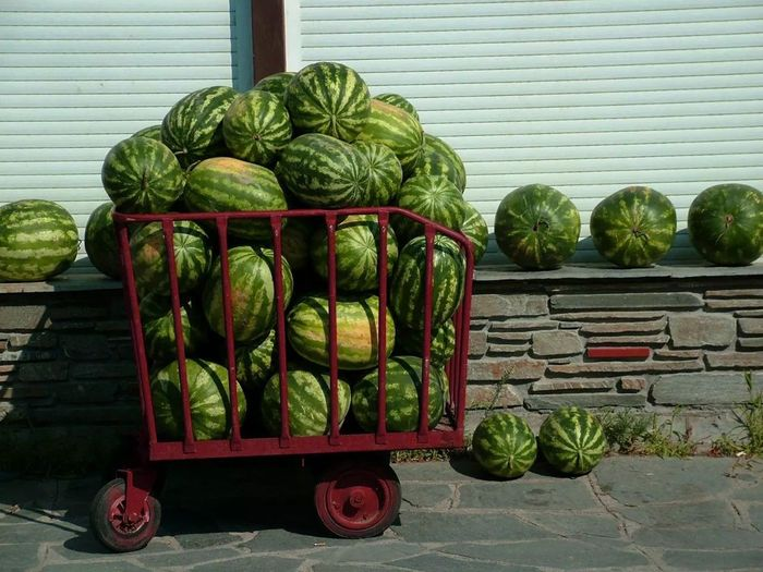 For sale Traveling Journey Watermelon🍉 Adapted To The City Green Fruits And Vegetables Market Streetphotography Streetmarket Colorful Foodphotography Food Photography Vegetables & Fruits Food No People Wall EyeEmNewHere Backgrounds Beach Life Greece Photos Summertime Outdoors Street Photography Urban Urbanphotography