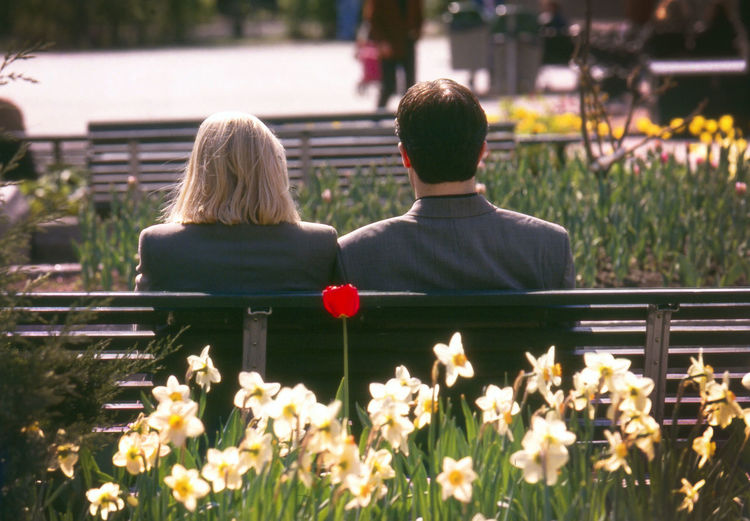 Rear View Of Man And Woman Sitting On Bench In Park During Sunny Day