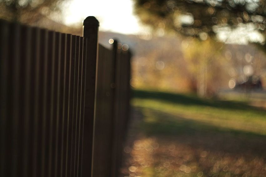 Fences Leaves Fence Gate Posts Bokeh Helios 44-2 58mm F2 Autumn Fall