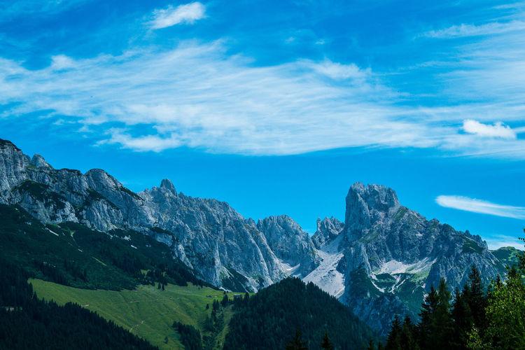 Bischofsmütze and Gosaukamm in the Austrian Alps Alps Austrian Alps Tree Mountain Forest Blue Pinaceae Tree Area Pine Tree Sky Landscape Mountain Range Geology Valley Mountain Ridge Natural Landmark Rugged