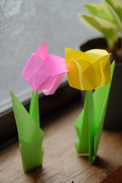 Things I Like Origami Paper View Papercraft Tulips Made By Me Handmade Still Life Natural Light Fujifilm Fujifilm_xseries Xf60 Pro Neg. Hi The Purist (no Edit, No Filter)