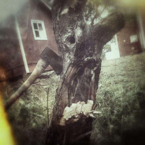 Bangfoto Mölndal Goteborg Death