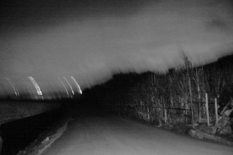 ターク ダークネス Dark Darkness 夜 よる ナイト Night ウージ ウージ畑 サトウキビ サトウキビ Sugarcane 夜回り 夜道 Street At Night Night Watchman 沖縄 Okinawa Nanjyo-city 南城市 日本 Japan モノトーン Monotone