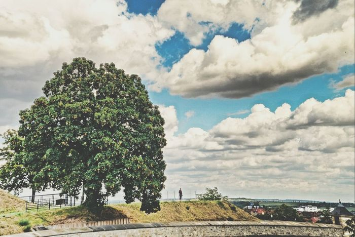 Erfurt Petersberg Cloud - Sky Nature Outdoors Tree First Eyeem Photo