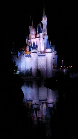 Walt Disney World Reflection