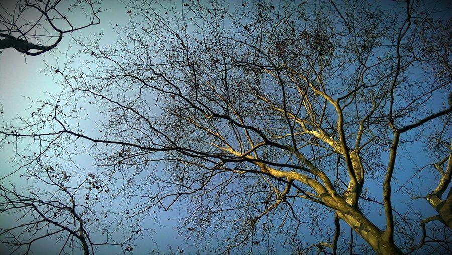 難得晴天。 Enjoying Life Taking Photos Relaxing Basicmedia