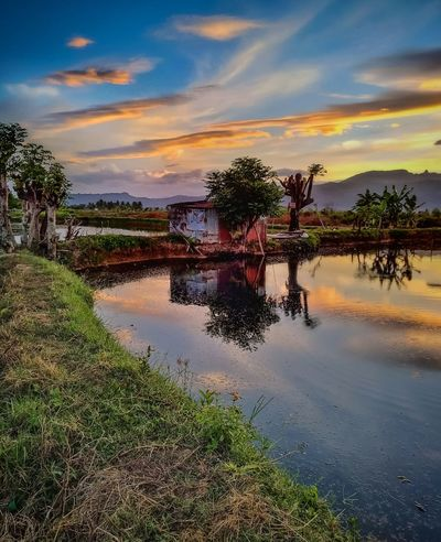 Reflection Water Cloud - Sky Lake Sunset Outdoors Tree Multi Colored Sky No People Nature Day See The Light Beauty In Nature Nature Perfection Nature Photography Amazing View Outdors No People Travel Photography EyeEm Selects Landscape Sulawesi Selatan EyeEmNewHere Be. Ready.