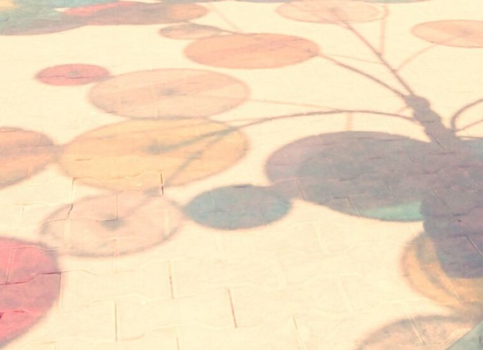 EyeEmNewHere Shadow Pattern Outdoors Artphotography Kalaghoda Rainbowshadow Creativity