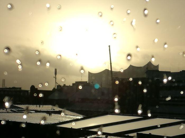 Hamburg Elphi Elbphilharmonie Raindrops Rain Schietwedder