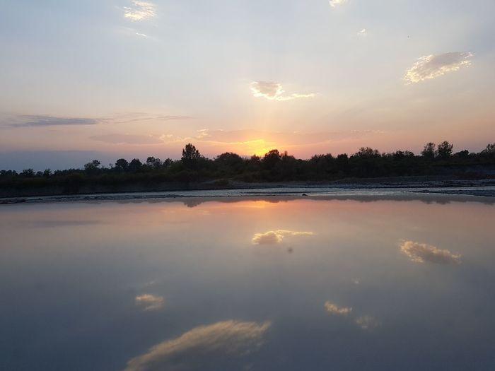 Swamp Marsh