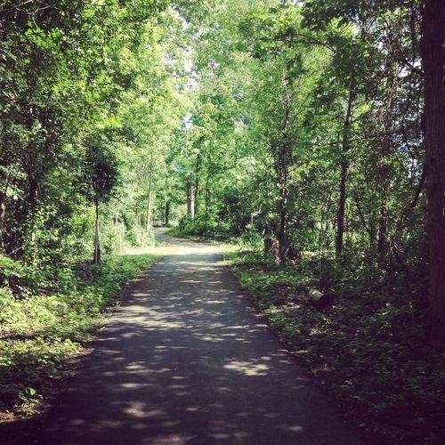 Forest :) Eye4photography  Hello World Taking Photos Enjoying Life