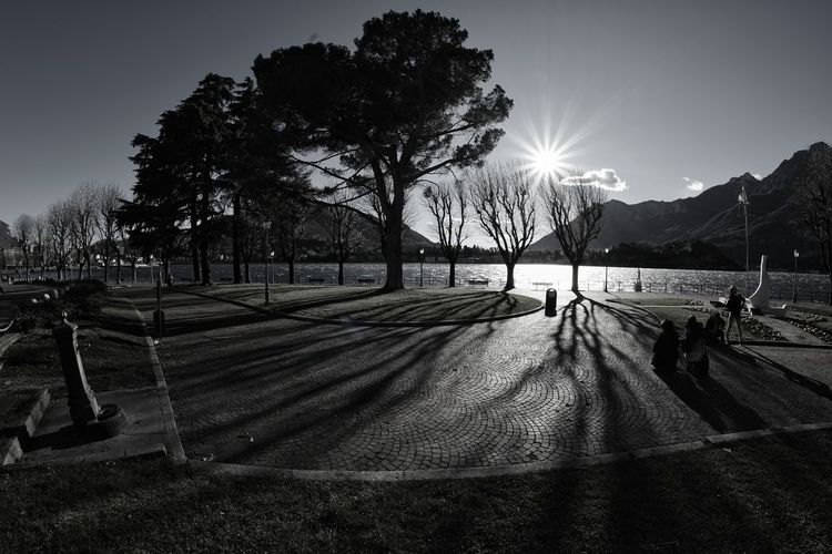 People At Park By Lake Against Sky
