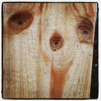 Det är ju så populärt att se ansikten i brädor...