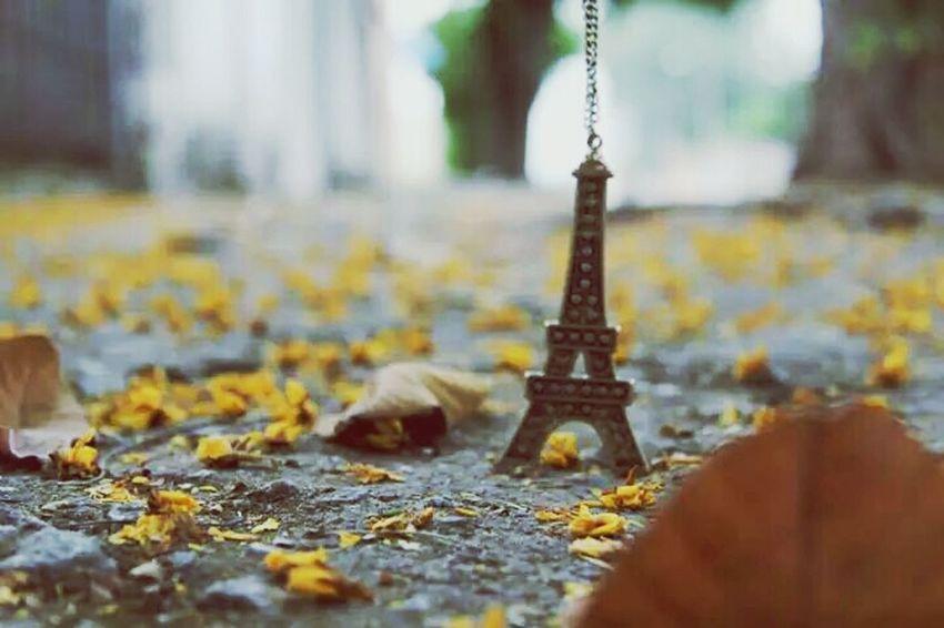 Outono em Paris!