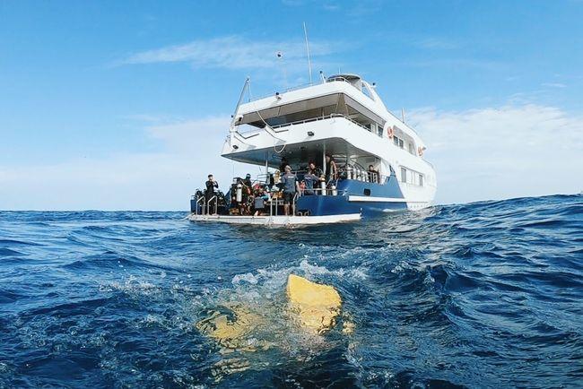 ocean mood Boat Scuba Diving Ocean Liveaboard Water Sea Nautical Vessel Waterfront Sky Group Of People Transportation
