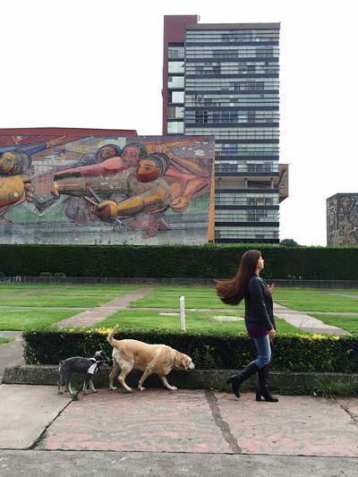 Huachis, Amarella & Me Walking By Ciudad Universitaria on Mexico City Just Enjoying The Moment 😄😄😄