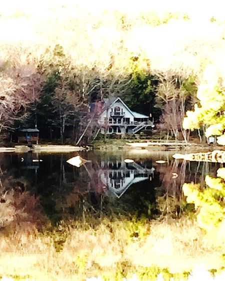 Water Reflections Reflection Water Water_collection EyeEm Nature Lover Landscape Landscape_Collection Nature Lake Peace And Quiet