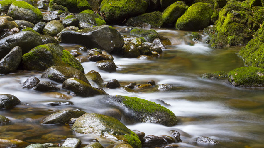 Beauty In Nature Blurred Motion Day Flowing Flowing Water Forest Italy Long Exposure Moss Motion Mountain Nature No People Outdoors Pebble River Rock Rock - Object Scenics - Nature Shallow Solid Stone Stream - Flowing Water Water Wood - Material