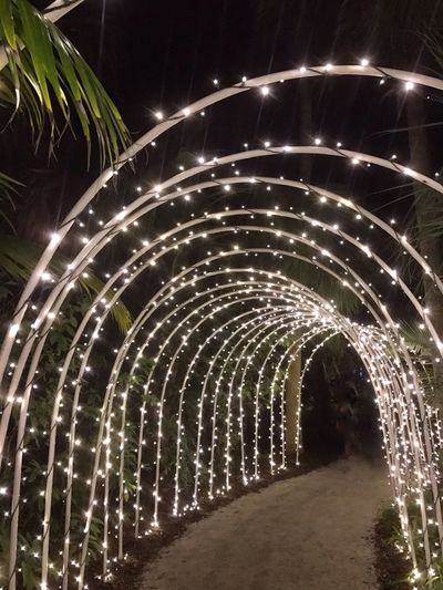 Illuminated Night No People Outdoors Garden Display Holiday Lights Holiday - Event Lights In The Dark Archway.. Lighted Ach Seasonal Decorations