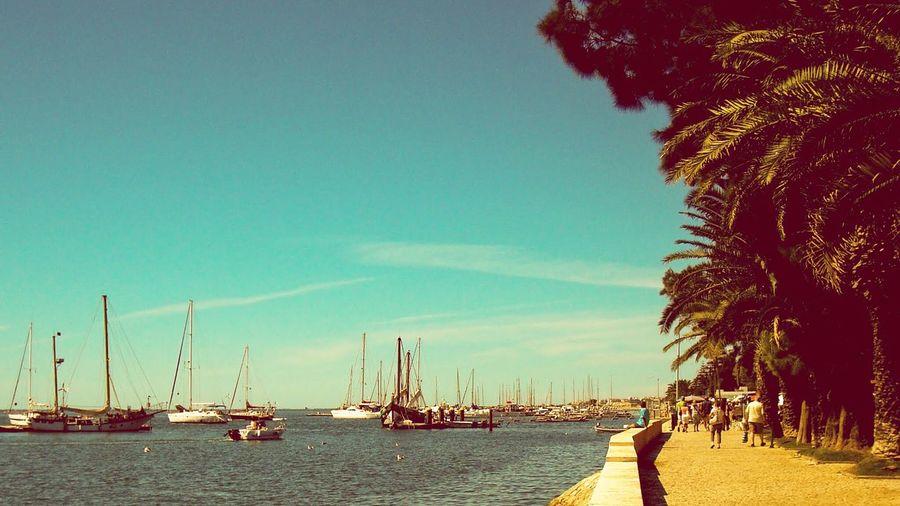 Olhao Algarve Portugal