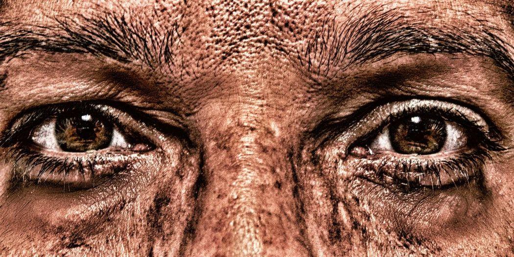Brown Close-up Eyes Eyes Watching You Full Frame Human Body Part Human Eyes Human Face Looking At Camera