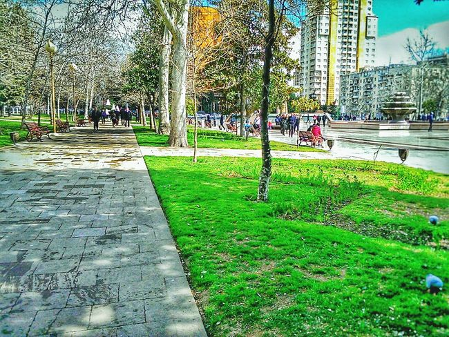 Park Photography Baku♡♥ By Me 👆 Enjoying Life Hanging Out By Me ♡♡ EyeEm Nature Lover EyeEm Flower