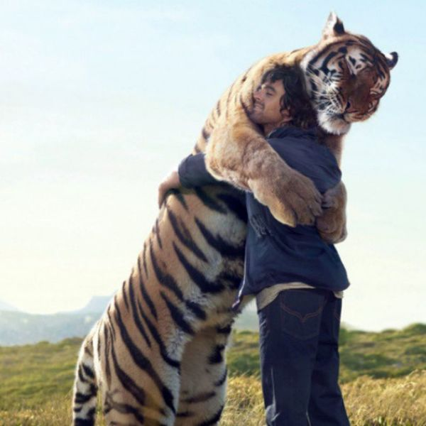 This is the sweetest picture, I would do anything to he able to hug a tiger. Tumblr Photography Tiger