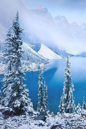 Snow Tree Mountain Landscape Blue Forest Nature Mountain Range Outdoors Scenics Sky Winter Cloud - Sky Cold Temperature No People Mountain Peak Polar Climate Close-up Day