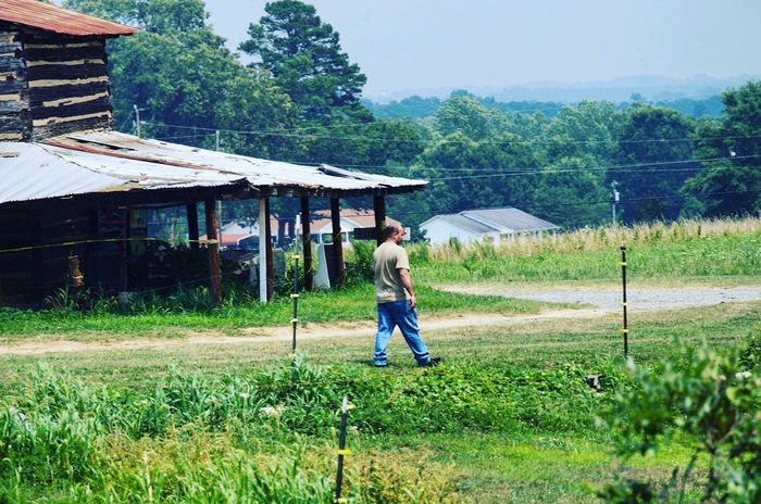 🍓🍃 Strawberrypicking Farm Nature Beautiful Mountains Vacation Hello World Enjoying Life Lovely Moments Gods Creation North Carolina Dad Father Cloudy Memories Beauty Family 2016 📷 The Great Outdoors - 2017 EyeEm Awards