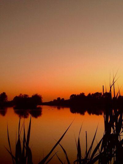 Dutch Landscapes DreamScapes I Love Holland Minimal 2 Ducks