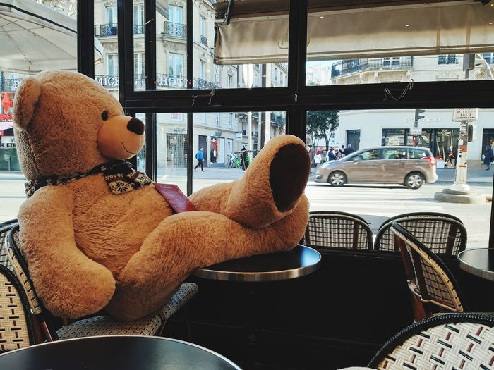 🐻 Paris Coffee Sitting Warm Clothing Cold Temperature Childhood Window Baby Close-up Baby Carriage Babyhood Baby Clothing Toddler  Baby Boys One Baby Boy Only Looking Through Window Window Washer One Baby Girl Only Baby Girls Snow Covered Babies Only Pacifier Side-view Mirror 0-11 Months