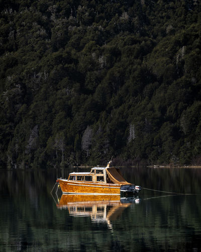 Boat in lake against trees in forest
