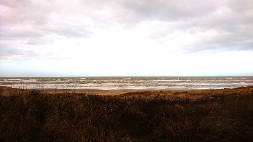Dunes-beach-sea-sky-clouds. Beach Landscape Horizon Over Water Sky Sea Beauty In Nature Zuid-Holland Sea Life Shore Noordwijk Nederland Noordzee Nature Zuid-Hollands Landschap Winter