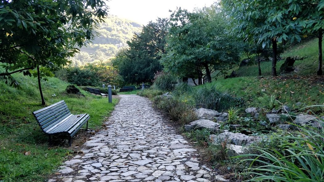 Ancient foots. Outdoors Nature Grass Path Pathway Path In Nature Go Down Day Beauty In Nature Green Nature Photography
