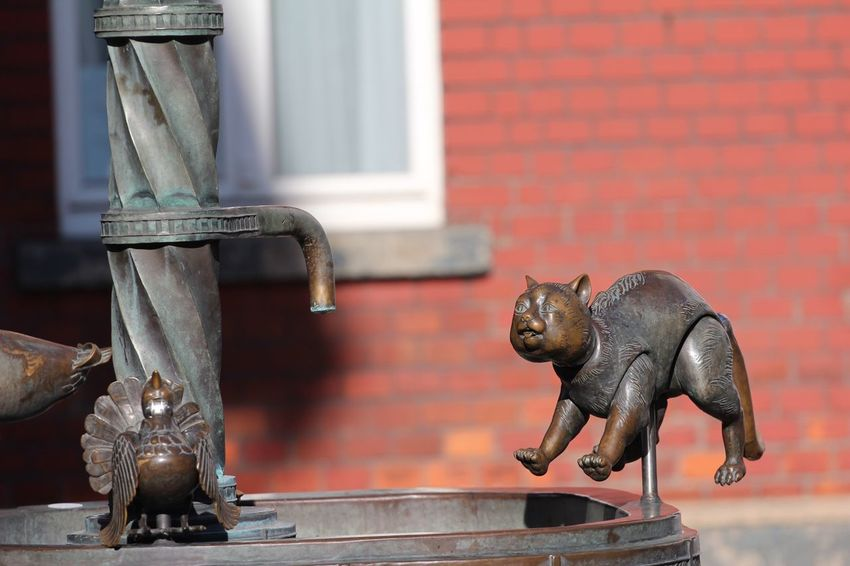 Brunnenfigur Brunnen Animal Representation Representation Sculpture Art And Craft Focus On Foreground No People Creativity Animal Themes Figurine  Wall - Building Feature Architecture Craft Statue Day Close-up Animal Wildlife Animal Metal Mammal Built Structure