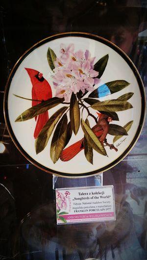 Art Flowers Galleryweekend Htconem8