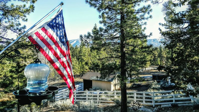 Nature On Your Doorstep Peaceful Surrounded By Nature Outdoor Photography The Great Outdoors The View Flag American Flag Red White And Blue Bird Feeder Water Pine Trees Cant Get Enough Beyond The Horizon Snow On The Mountain Mountain_collection Layers Samsung Galaxy Note 5 Lovely White Picket Fence Big Bear Mountain Grandpas House The Great Outdoors - 2016 EyeEm Awards